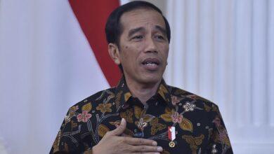 Photo of Jokowi Sambut Hangat Kunjungan Mendagri Australia di Istana Negara