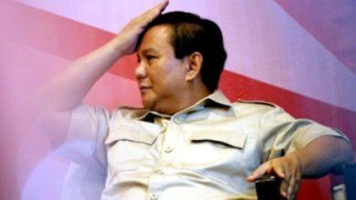 Photo of Prabowo jadi Ketum Gerindra Lagi, Pengamat Politik Sebut Antara Gagal Cetak Kader dan Masih Berhasrat Capres di 2024