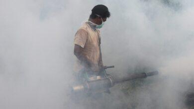 Photo of Februari & Maret, Waspadai Demam Berdarah Dengue di Jakarta