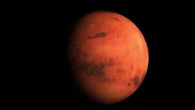 Photo of Elon Musk Perkirakan Biaya Hidup di Planet Mars