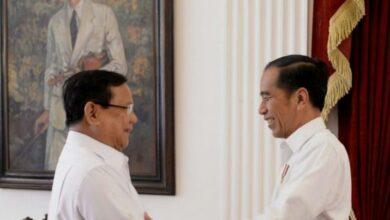 Photo of Menteri Dari Kalangan Profesional Akan Loyal ke Presiden