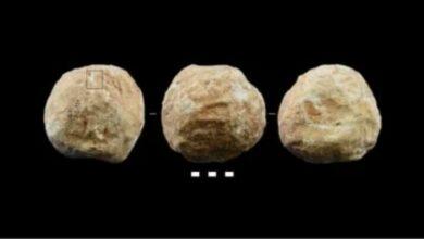 Photo of Ternyata Ini Loh Fungsinya Batu Bola Milik Manusia Purba