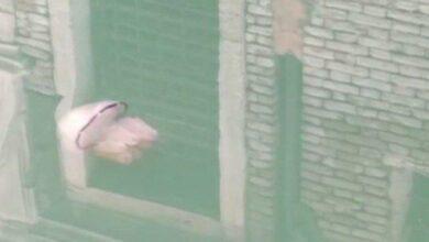 Photo of Italia Lockdown, Ubur-ubur Terlihat Berenang di Sebuah Kanal Kota Venesia