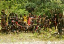 Photo of Inilah Gerombolan Separatis Teroris KKSB Papua Pemembak Pendeta Yeremia Zanambani