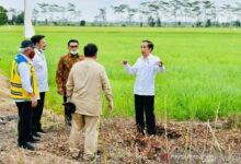 Photo of Jokowi Minta Potensi Desa di Indonesia Dikembangkan